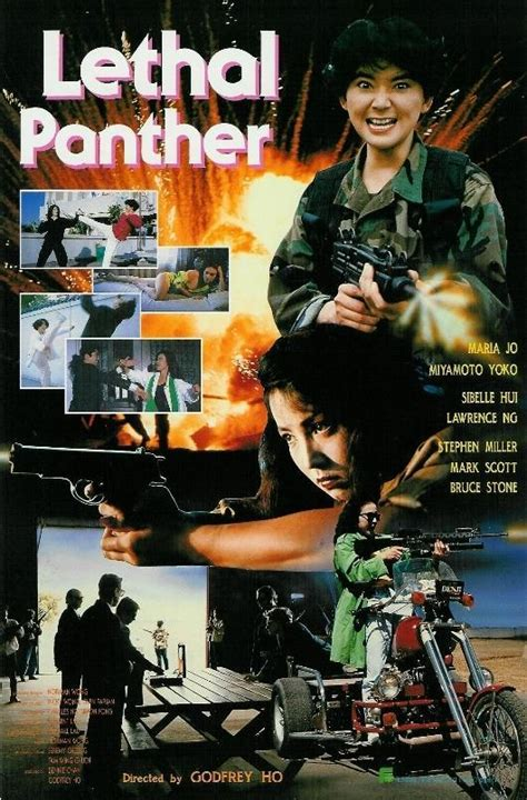 Lethal Panther (1990) - FilmAffinity